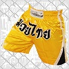 FIGHTERS - Thai Shorts / Farben
